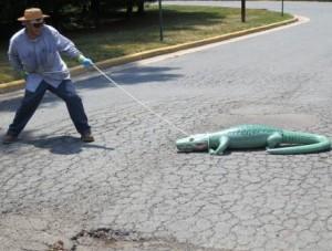 alligator-asphalt-cracking-repairs